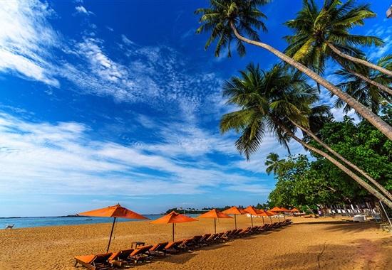 Calamander Unawatuna Beach -